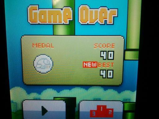 Flappy Bird High Score 40 Screenshot your high score in