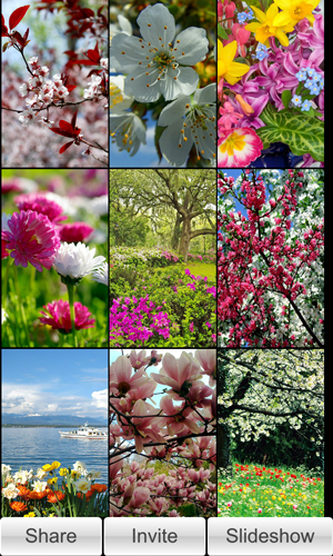 Spring Wallpapers Slideshow Hd Blackberry Forums At