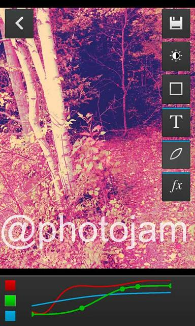 Photojam - Supports Text, Filters, Color Curves and Custom Effects-forest_in_camera.jpg