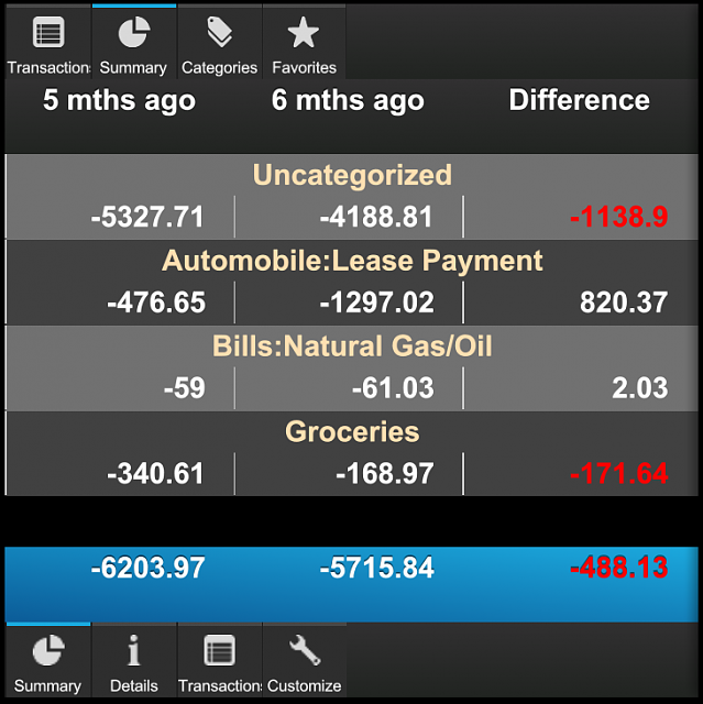 Cashalyst - Expense Tracking App - Now with Q10 and Z10 portrait support-q10_007_summary.png