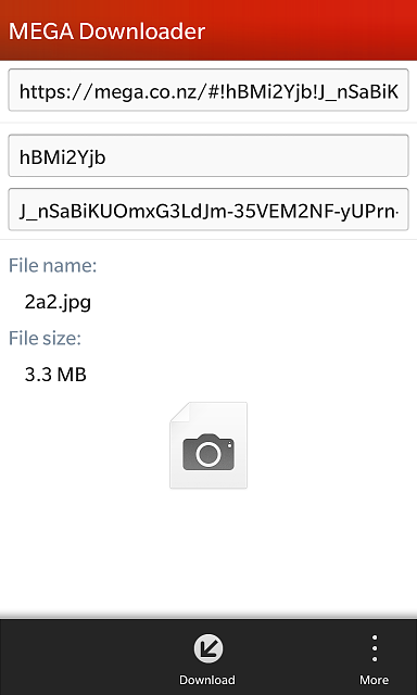 BB10 Native Mega Downloader! (By travisredpath of CB)-screen_z1.png