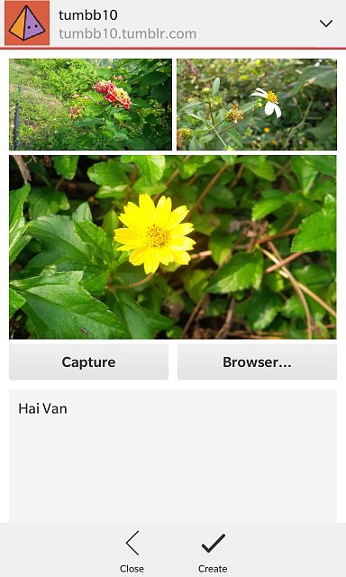Wall - Tumblr client for BlackBerry 10.-img_20141128_235608.png