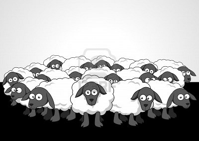 Why are so few people using Blackberry phones?-sheep.jpg
