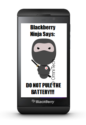 "Sachesi and ""OTA"" Upgrades-z10_ninja_dont_pull_battery_cpr.png"