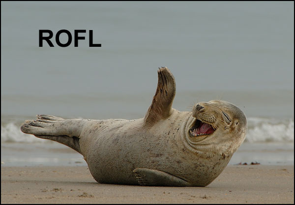Just found something new in OS 10.3-rofl_seal.jpg