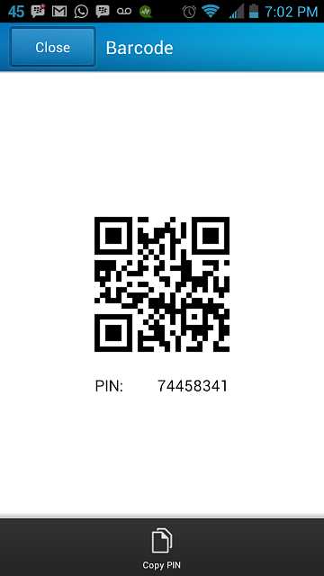 gay bb pin