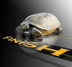 I support BBRY and I buy shares !-turtle-crossing-finish-line.jpg