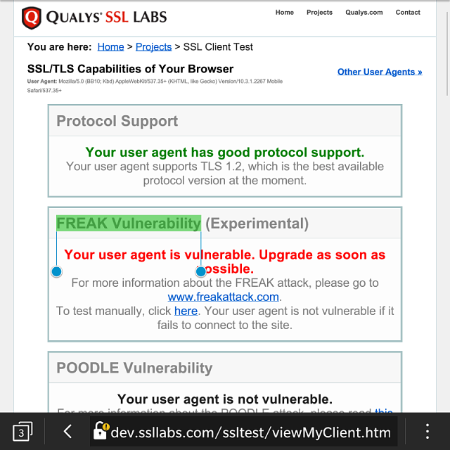 BlackBerry 10 browser FREAK Vulnerability-img_20150306_185153.png