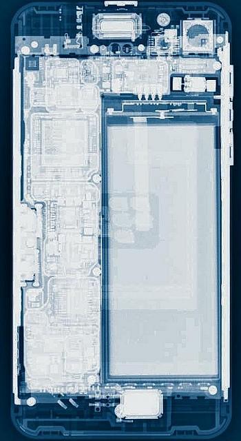 Iphone 6s plus xray wallpaper