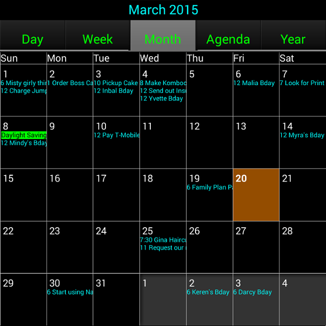 3rd Party Calendar App-img_20150320_033128.png