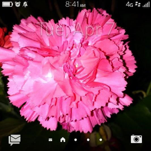 Can I change the default home screen?  (OS 10, BB Classic)-home.jpg