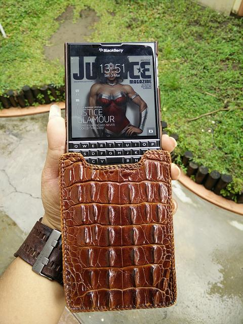 Passport Cases-genuine-horn-back-crocodile-papua-pouch-tetded-case-3.jpg