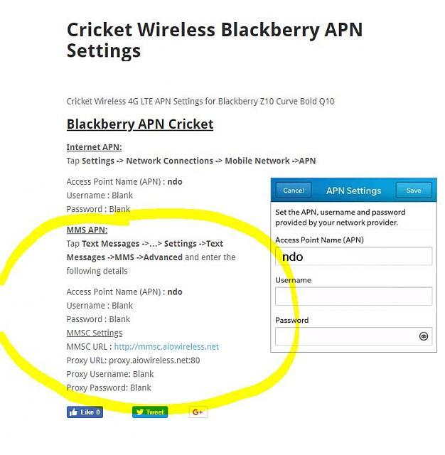 Cricket mms apk download
