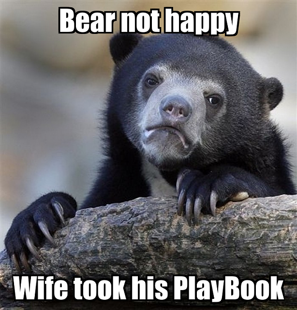 Caught my wife on my PlayBook!-bear-playbook.png
