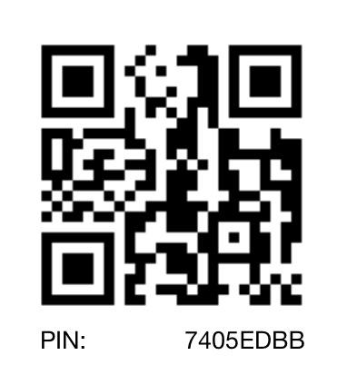 Single ladies bbm pins