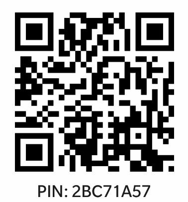 Black bbm pins