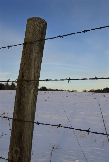 The Last post Wins!-fence-post-wire_dsc0072.jpg
