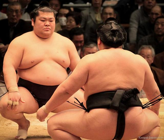 Ban the Person above you game!-sumo-tournament-3.jpg