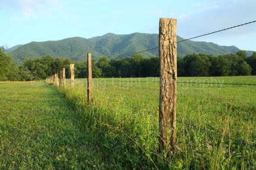 The Last post Wins!-wooden-fence-post-decorating-4.jpg