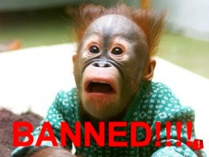 Ban the Person above you game!-banned-chimp5-300x225.jpg