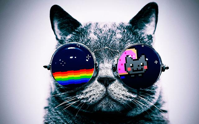 BlackBerry screen shot thread-nyan_cat_hd_widescreen_wallpapers_1680x1050.jpg