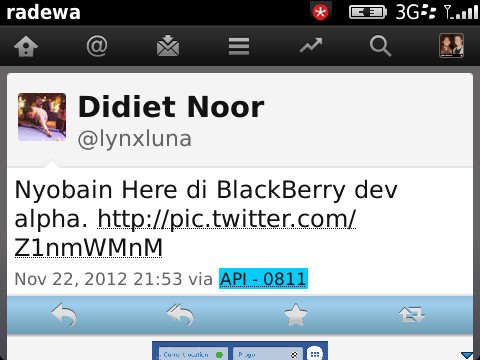 "Tweeting ""Via API - 0811"" What is that?-munch_2012_11_27_222801.jpg"