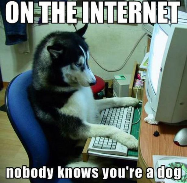 FBI sexting problems-on_the_internet_nobody_knows_you_re_a_dog.jpg