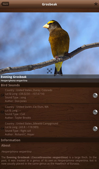 Bird Calls Bird Guide with 2000+ Songs & Sounds for