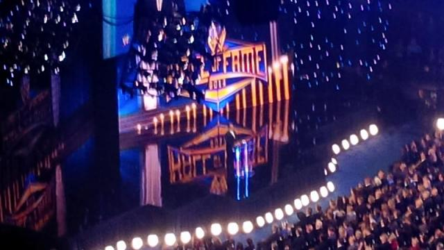 WWE Hall of Fame / Wrestlemania 29-img_00000057.jpg