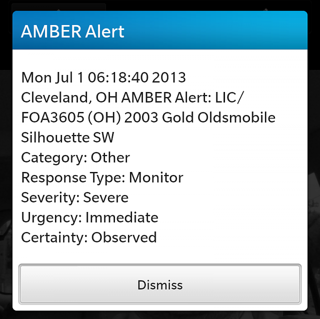 Child abduction in Cleveland OH!-img_20130704_edit.png