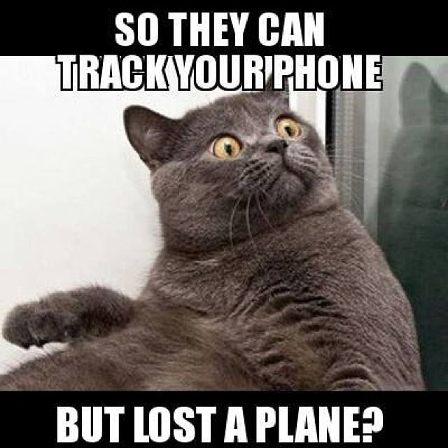 Calling all Conspiracy Theorists - Missing Malaysian airplane.-100n.jpg