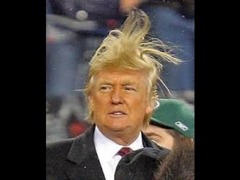 Official everyfin' to do with PlayBook hijack thread?-trump-hair.jpg