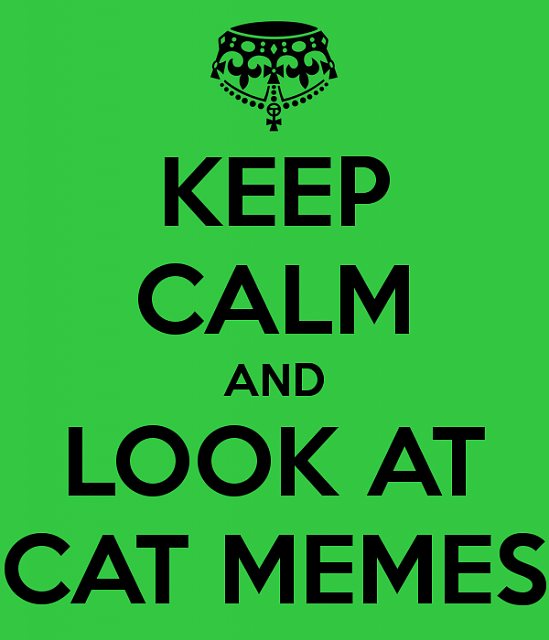 Official everyfin' to do with PlayBook hijack thread?-keep_calm_and_look_at_cat_memes_1_by_snow_chainz-d8rb8r7.png
