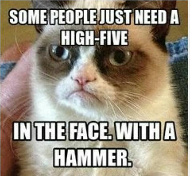 The CB 1M Challenge-some-people-just-need-high-five-face-hammer-funny-insult-meme-photo.jpg